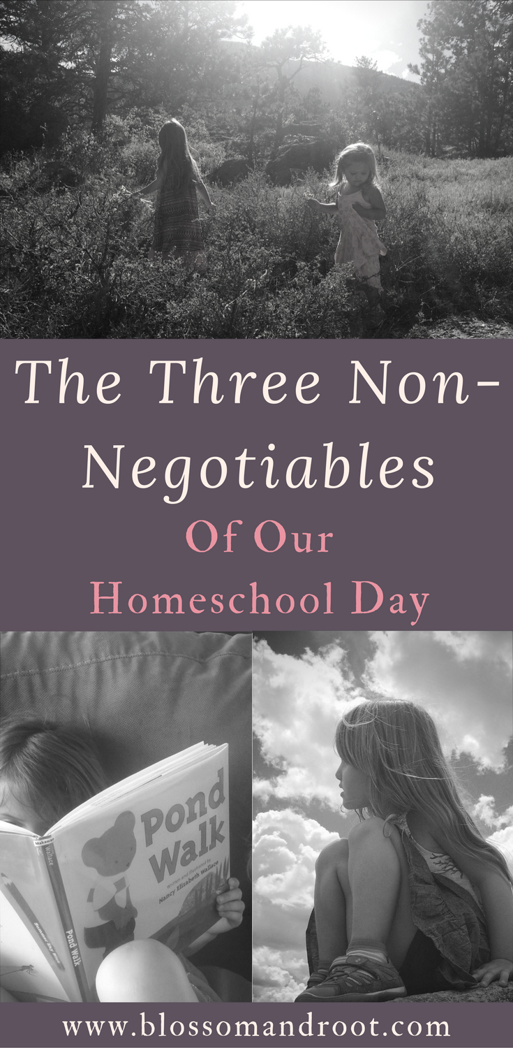 The three elements that make any day in our nature-based, Charlotte Mason inspired homeschool a successful one.
