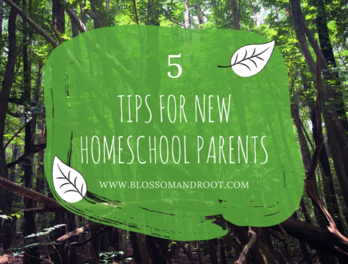5 Tips for New Homeschool Parents