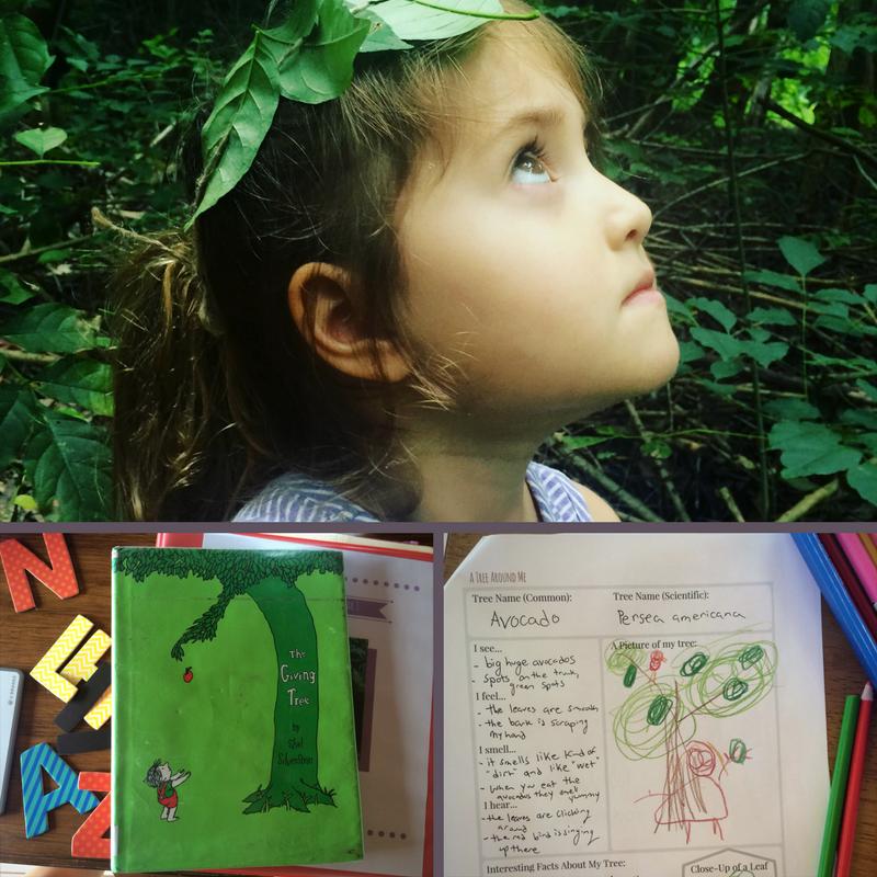 Literature Inspired Nature Study