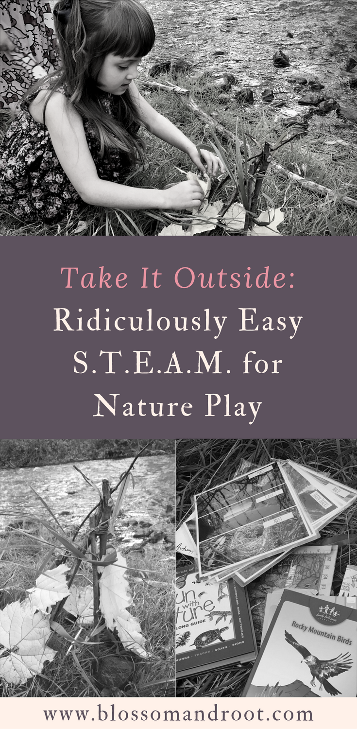 Take it outside: ridiculously easy steam for nature play. Includes a free download of 36 STEAM cards to use for outdoor play! Perfect for nature study, science, STEM, STEAM, and creative exploration for ages 2 to 12.