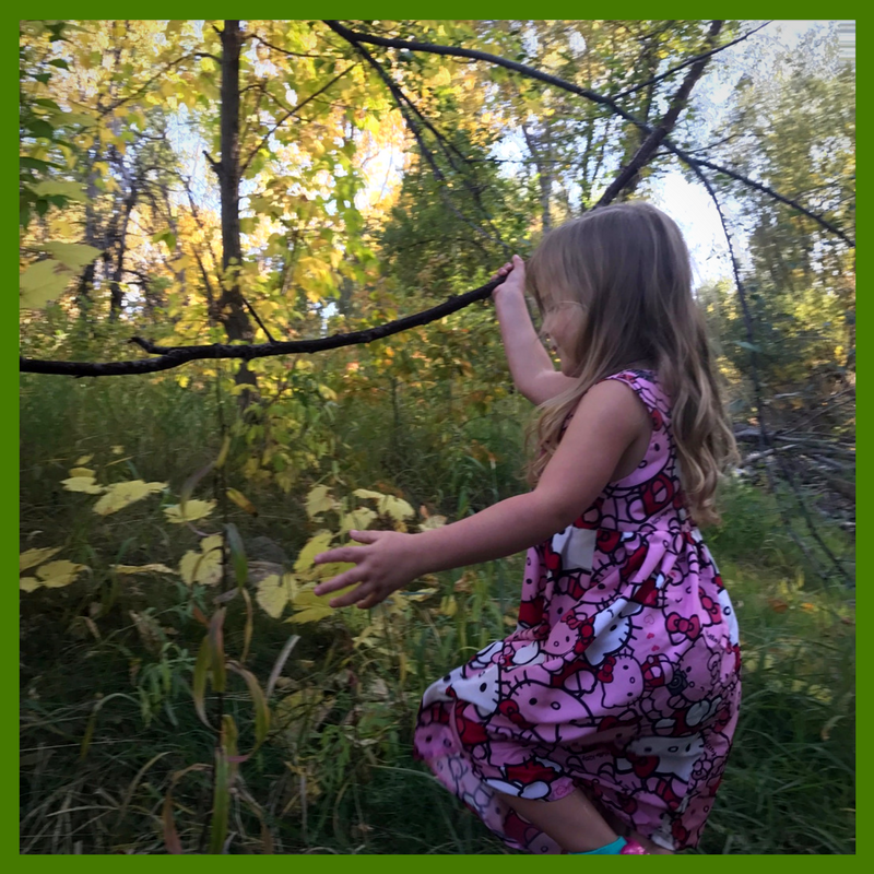 steam for nature play