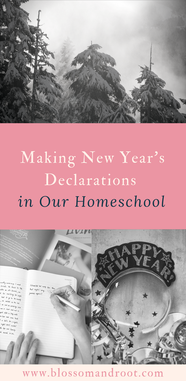 In our homeschool, we don't believe in making resolutions. We believe in making declarations.