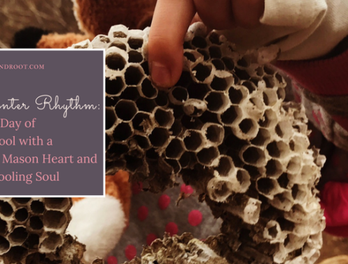 our winter rhythm: charlotte mason heart unschooling soul