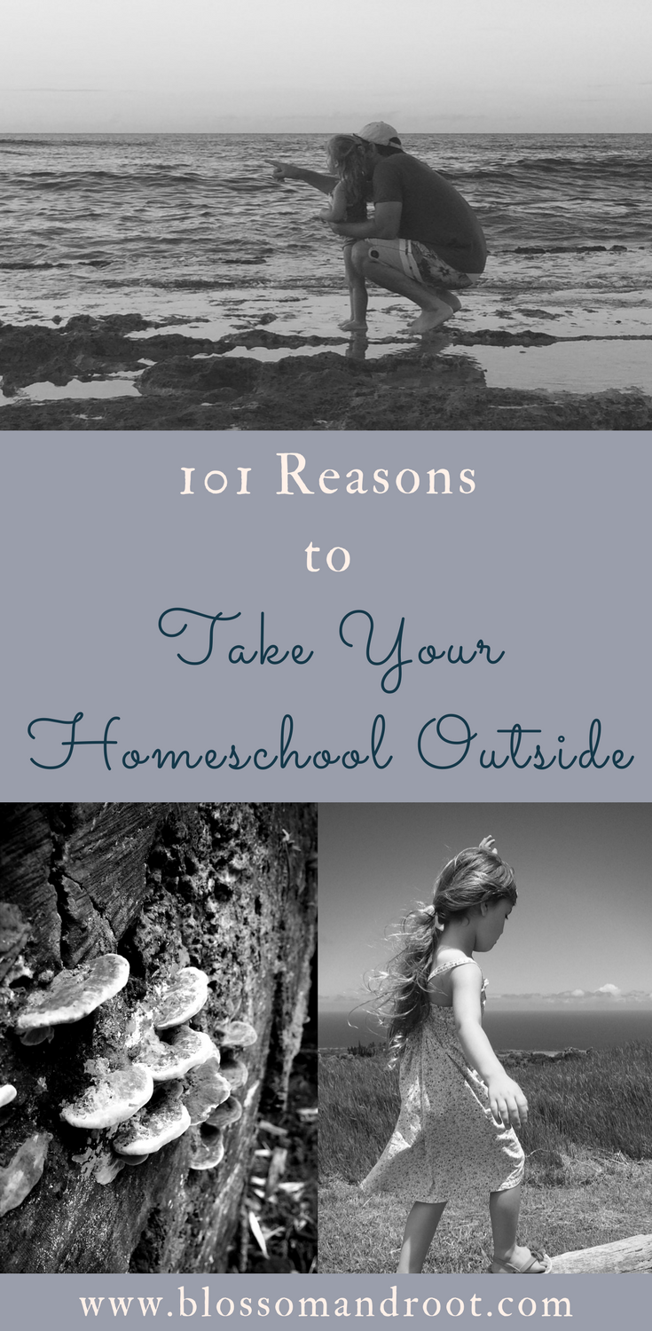 101 reasons to incorporate nature study, open-ended play outside, and wilderness in your homeschool. From preschool to kindergarten to elementary years, middle school, and high school--all homeschooled children (and all children) benefit from time spent outside.