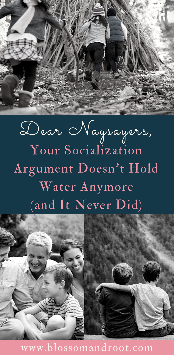 Tired of hearing that your homeschooled child will never be socialized? Me too. Here are six reasons why that socialization argument against homeschooling doesn't hold water. Homeschooling, homeschoolers, socialization.