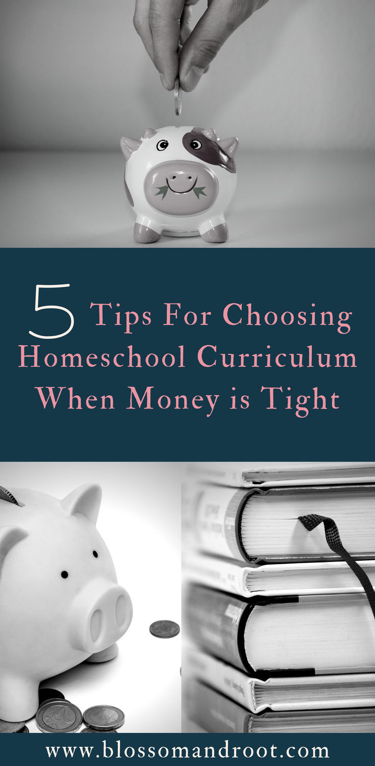 5 tips for choosing homeschool curriculum when you're on a budget. How to buy homeschool curriculum, where to find the best deals, and how to use free and lower-cost resources to fill in the gaps.