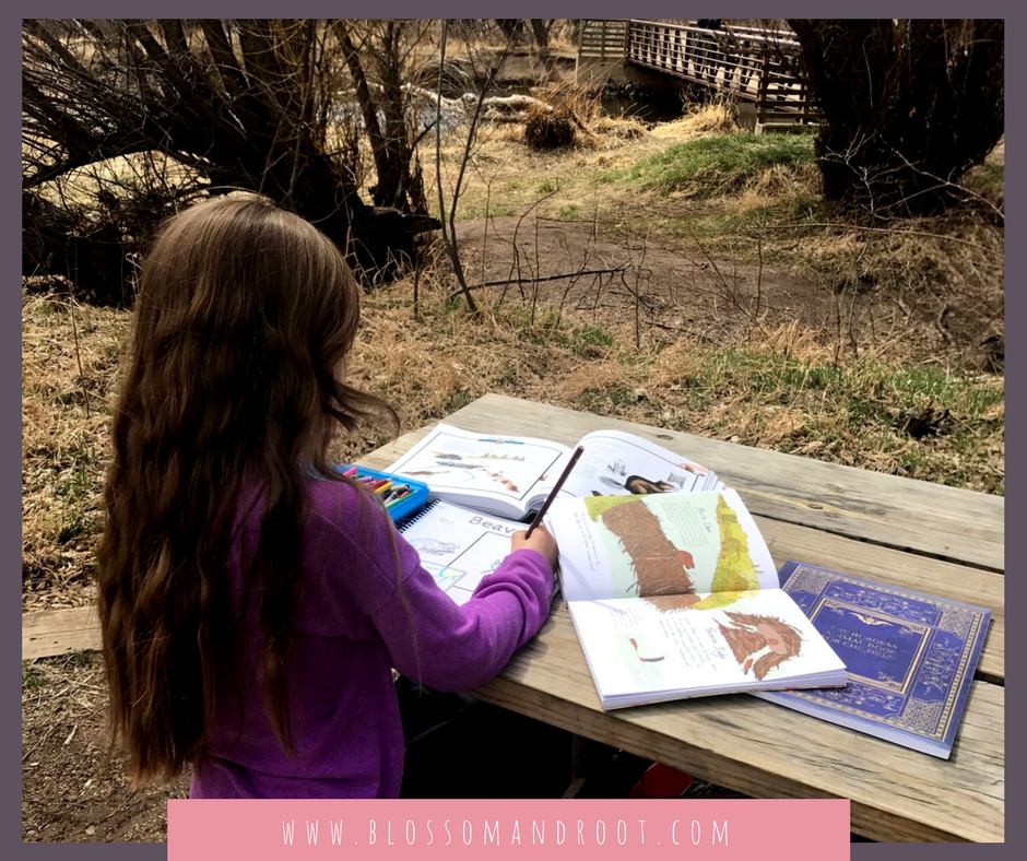 nature study homeschool kindergarten