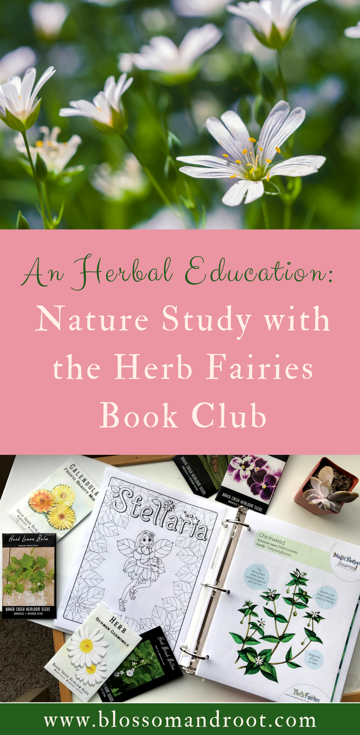 Learn about the Herb Fairies Book Club by taking a peek at how we will be incorporating it into our nature-based homeschool this year. This program teaches children how to forage for and use medicinal herbs through stories, recipes, and journaling pages.