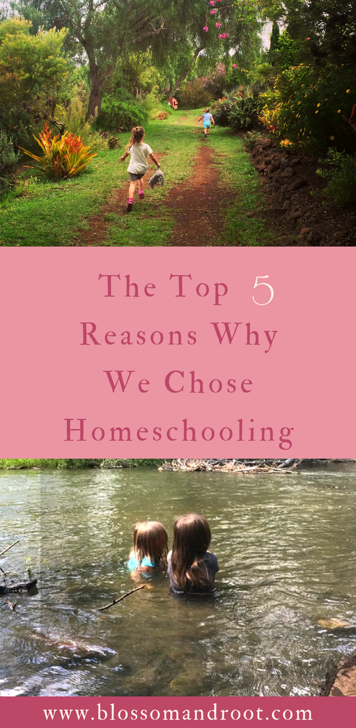 There are dozens of reasons that our family made the decision to homeschool our two daughters--here are the top five.