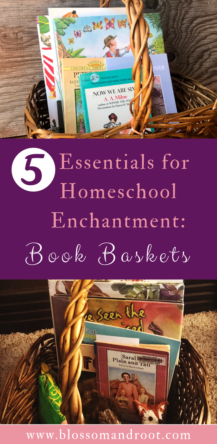 Book baskets, book bins, morning baskets--all are full of potential discovery and delight, and they're such a simple concept to execute! Read to discover how, and why, to include book baskets in your homeschool.