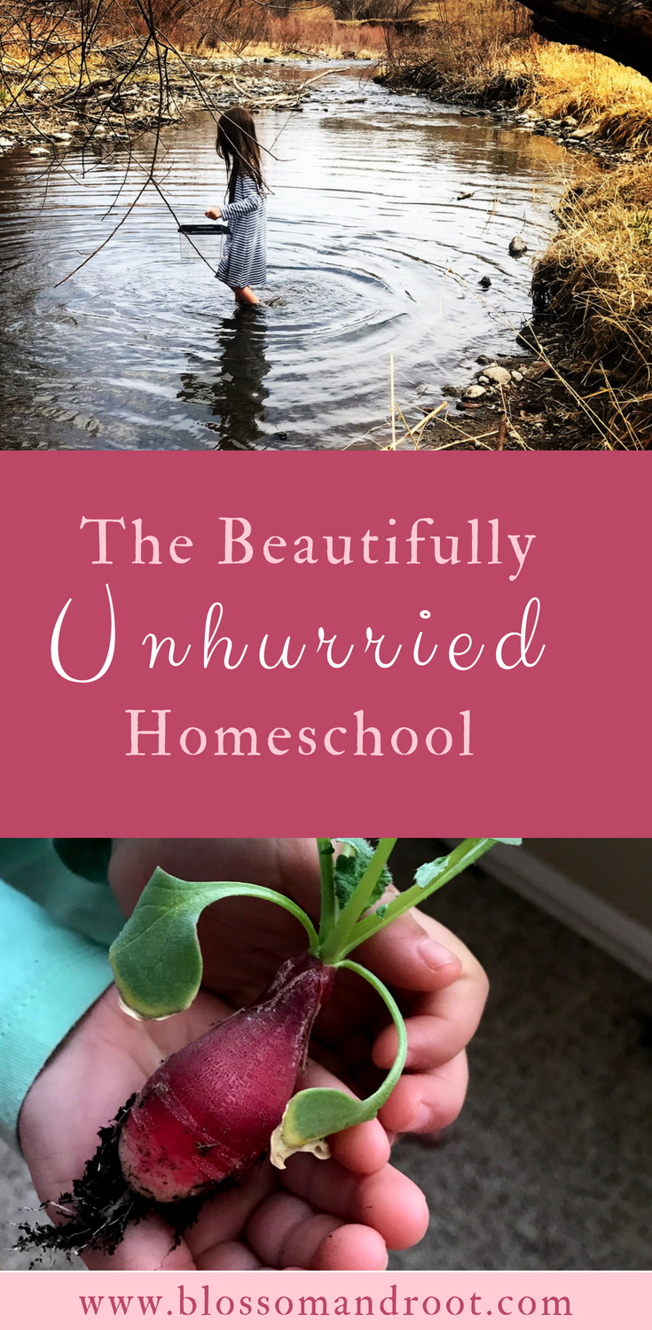 relaxed homeschooling for the win