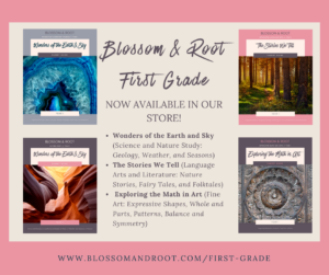 blossom and root first grade nature based homeschool curriculum