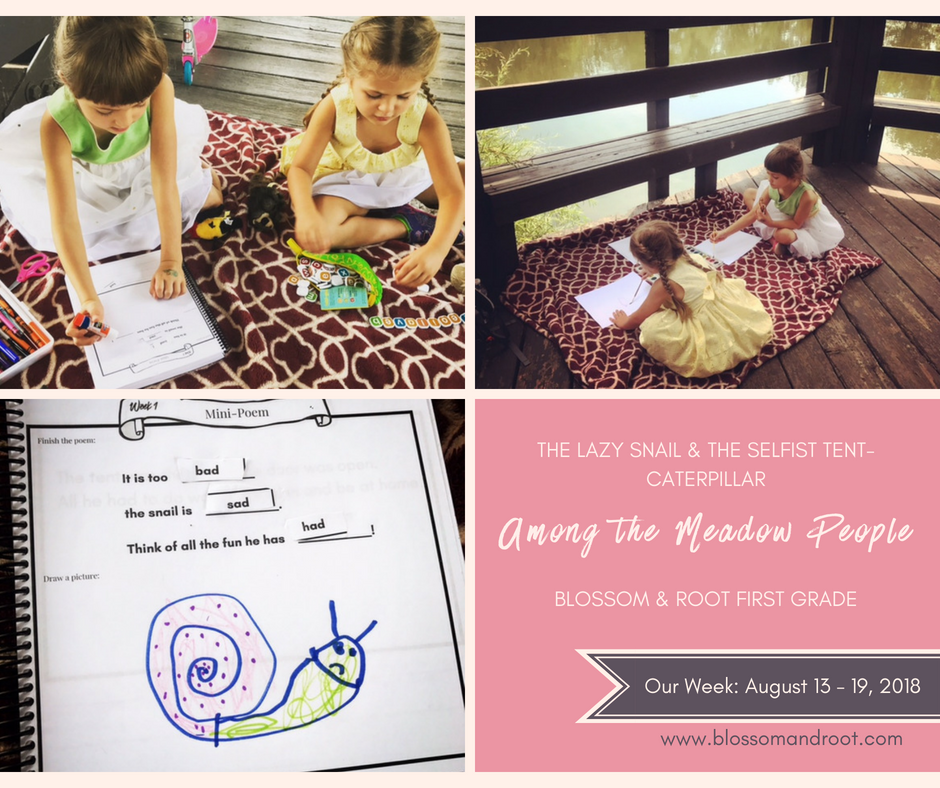 Our Homeschool Week in Review August 13