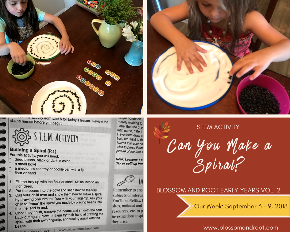 secular homeschool stem activities