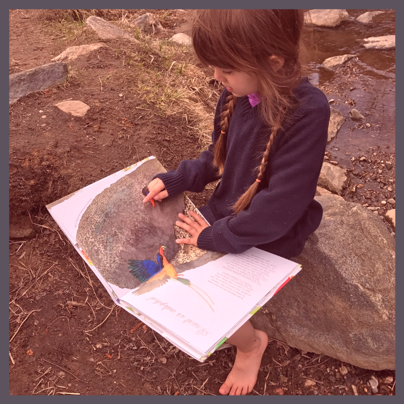 nature-based homeschool